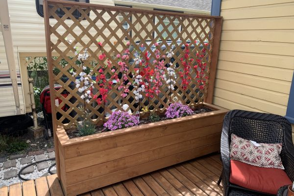 Custom Planter with Flowers